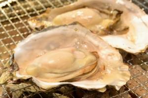神奈川の牡蠣小屋なら牡蠣が人気のレストランも入れて6軒!①